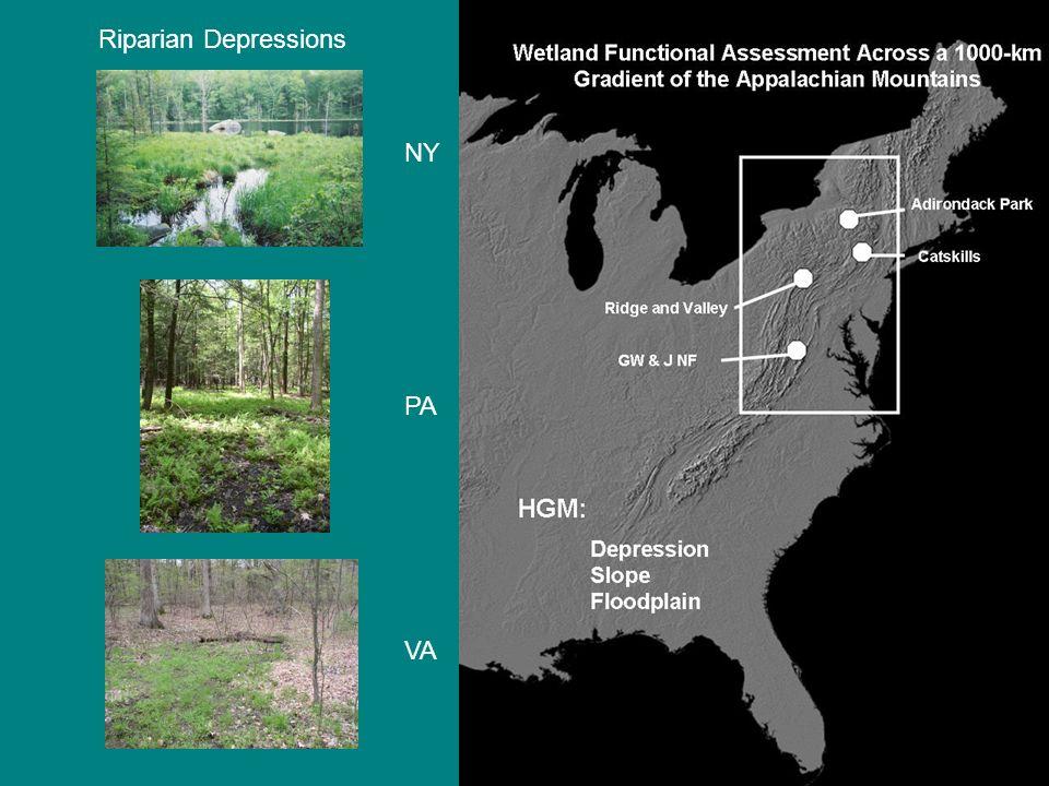 Riparian Depressions NY PA VA