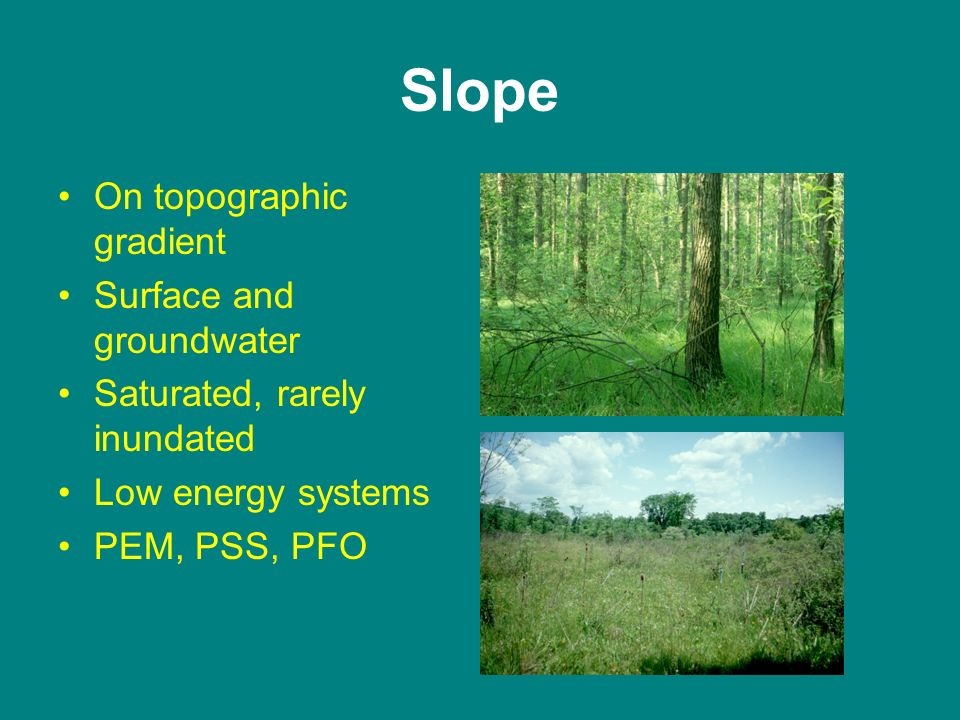 Slope On topographic gradient Surface and groundwater Saturated, rarely inundated Low energy systems PEM, PSS, PFO