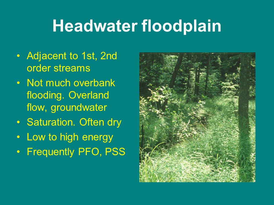 Headwater floodplain Adjacent to 1st, 2nd order streams Not much overbank flooding.