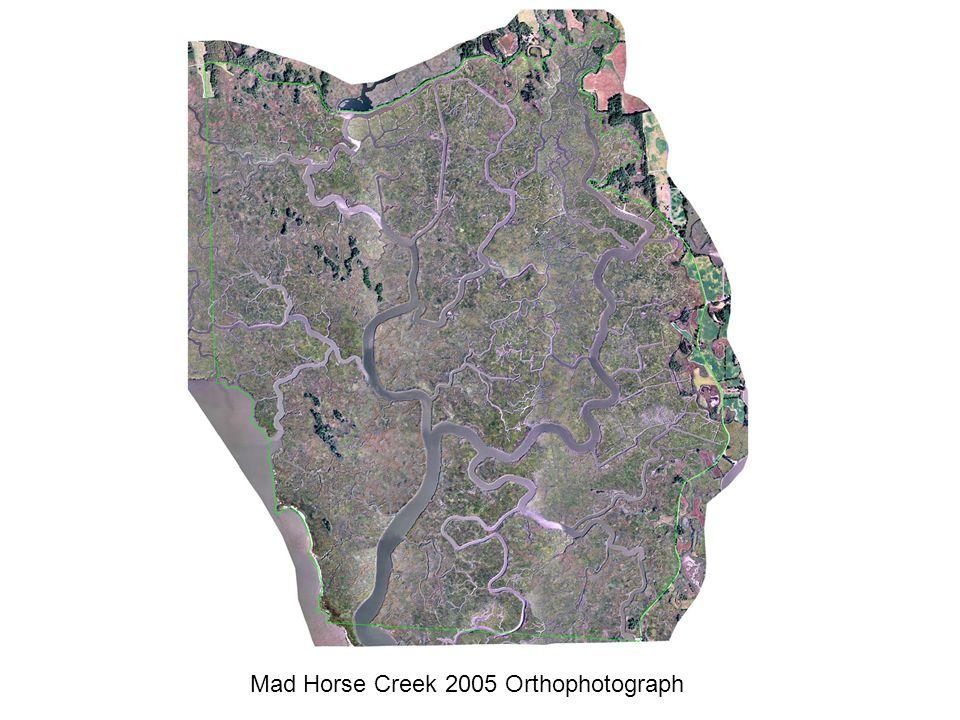 Mad Horse Creek 2005 Orthophotograph