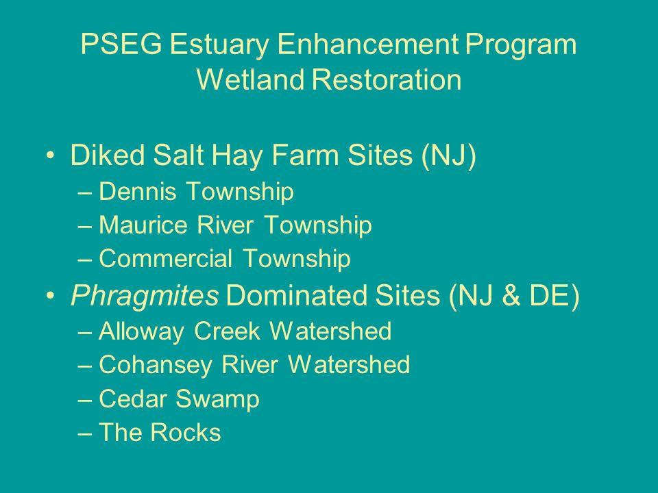 PSEG Estuary Enhancement Program Wetland Restoration Diked Salt Hay Farm Sites (NJ) –Dennis Township –Maurice River Township –Commercial Township Phra