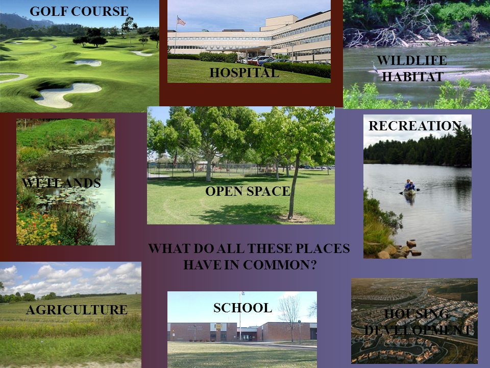 GOLF COURSE HOSPITAL AGRICULTURE WILDLIFE HABITAT WETLANDS OPEN SPACE SCHOOL RECREATION HOUSING DEVELOPMENT WHAT DO ALL THESE PLACES HAVE IN COMMON