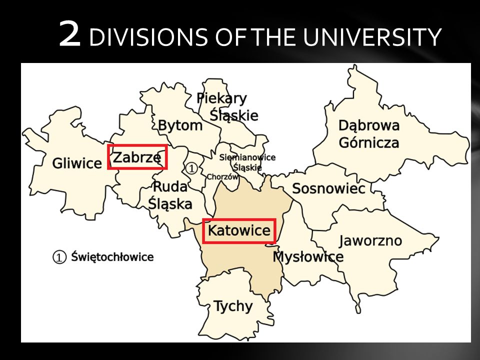 2 DIVISIONS OF THE UNIVERSITY