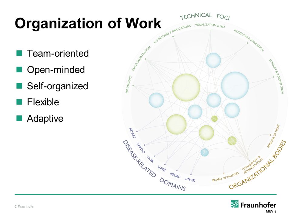 © Fraunhofer Organization of Work Team-oriented Open-minded Self-organized Flexible Adaptive