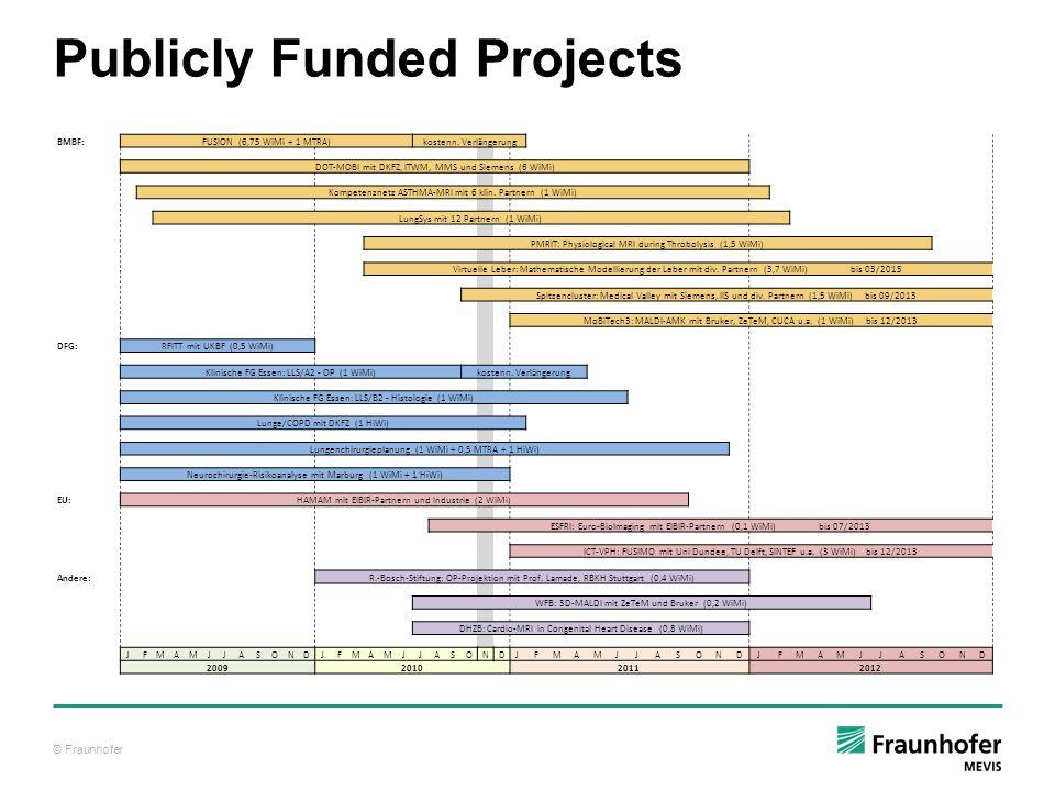 © Fraunhofer Publicly Funded Projects BMBF:FUSION (6,75 WiMi + 1 MTRA)kostenn. Verlängerung DOT-MOBI mit DKFZ, ITWM, MMS und Siemens (6 WiMi) Kompeten