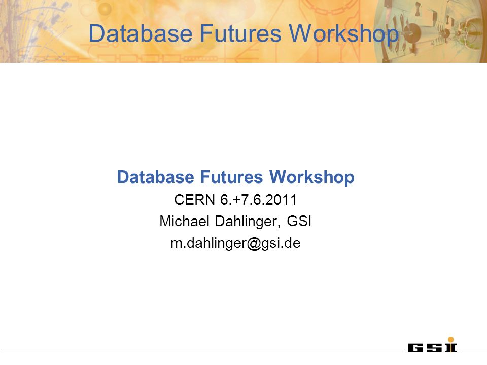 Database Futures Workshop CERN Michael Dahlinger, GSI