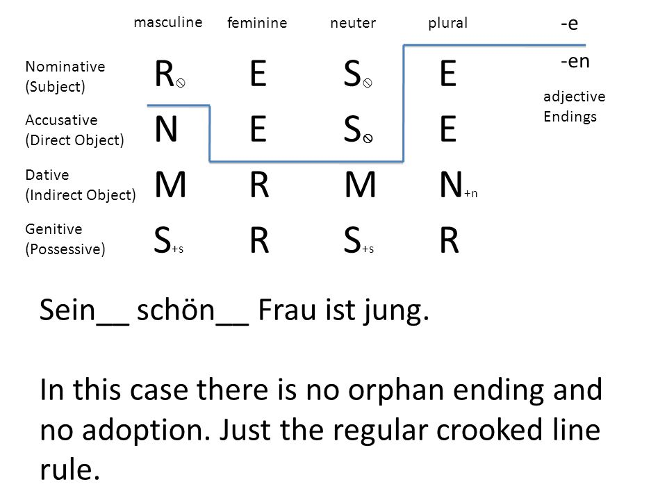 R ES E NES E MRMN +n S +s R R -e -en masculine feminineneuterplural adjective Endings Nominative (Subject) Accusative (Direct Object) Dative (Indirect Object) Genitive (Possessive) Sein__ schön__ Frau ist jung.