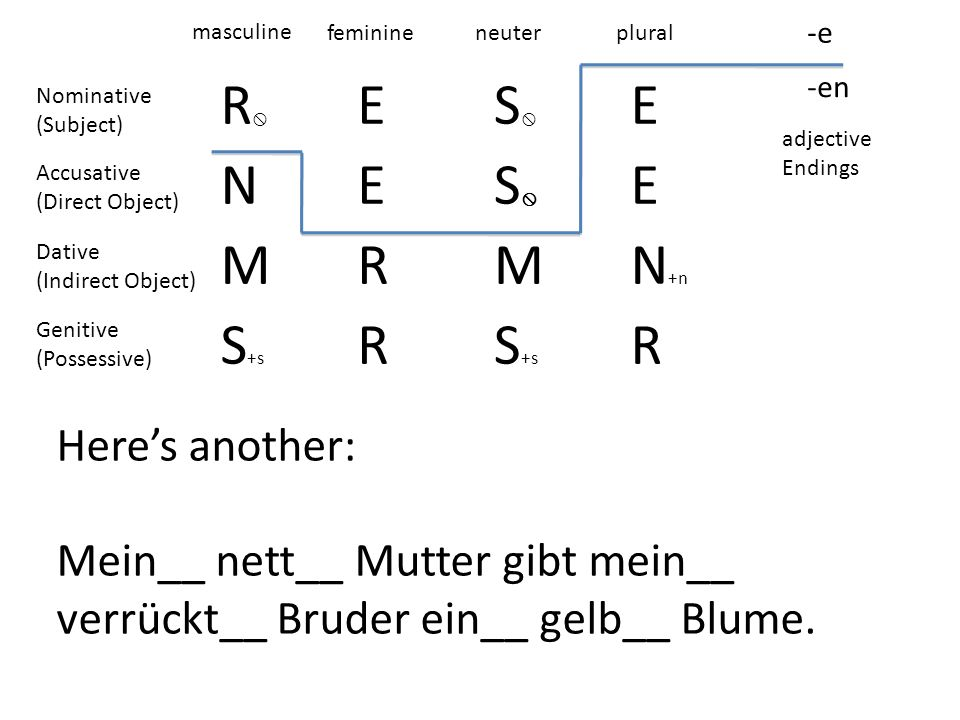 R ES E NES E MRMN +n S +s R R -e -en masculine feminineneuterplural adjective Endings Nominative (Subject) Accusative (Direct Object) Dative (Indirect Object) Genitive (Possessive) Heres another: Mein__ nett__ Mutter gibt mein__ verrückt__ Bruder ein__ gelb__ Blume.