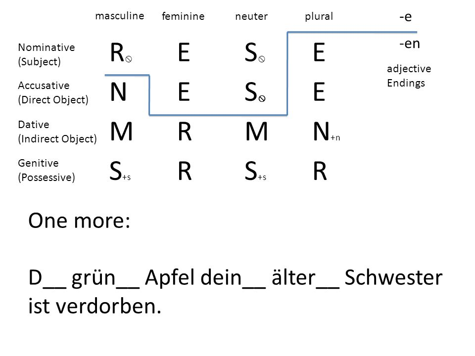 R ES E NES E MRMN +n S +s R R -e -en masculine feminineneuterplural adjective Endings Nominative (Subject) Accusative (Direct Object) Dative (Indirect Object) Genitive (Possessive) One more: D__ grün__ Apfel dein__ älter__ Schwester ist verdorben.