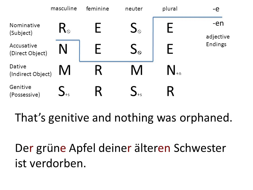 R ES E NES E MRMN +n S +s R R -e -en masculine feminineneuterplural adjective Endings Nominative (Subject) Accusative (Direct Object) Dative (Indirect Object) Genitive (Possessive) Thats genitive and nothing was orphaned.