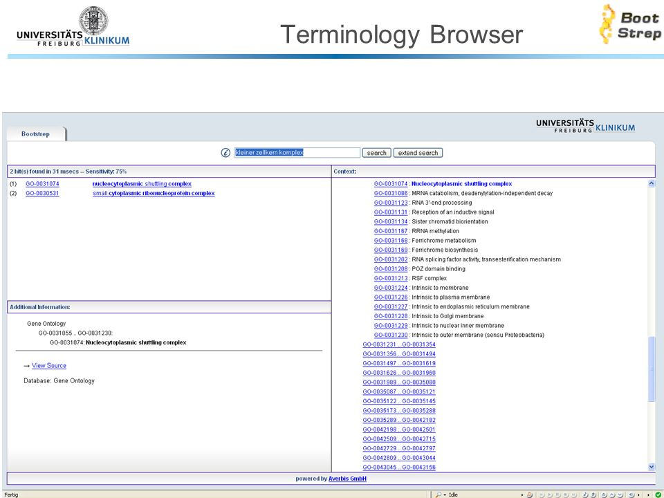 Terminology Browser