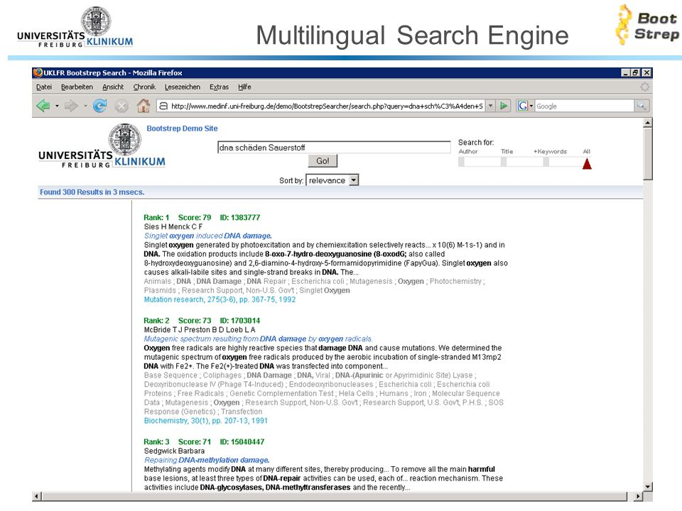 Multilingual Search Engine