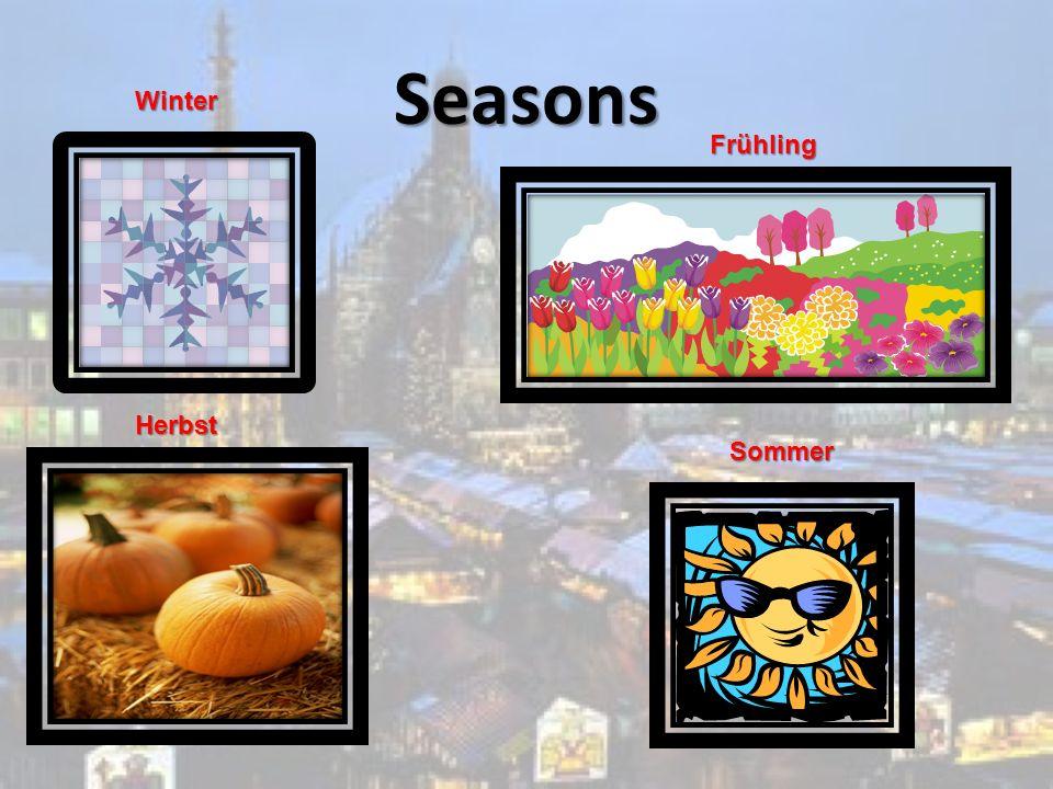 Seasons Winter Sommer Frühling Herbst