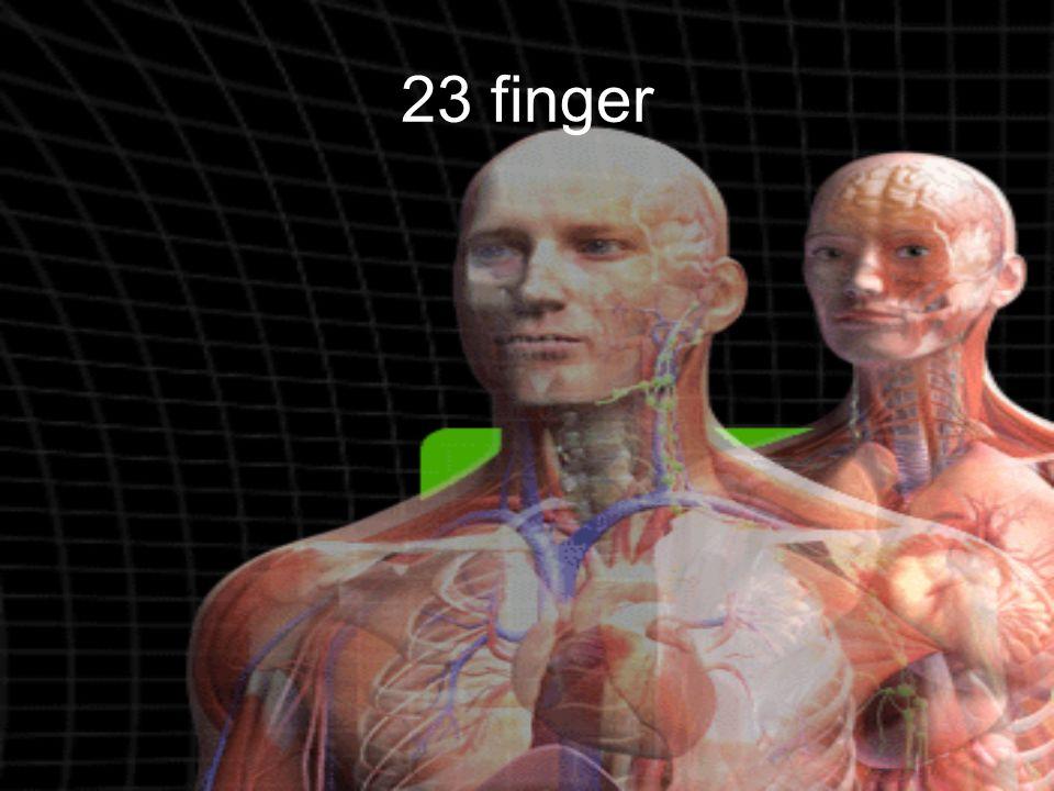 23 finger