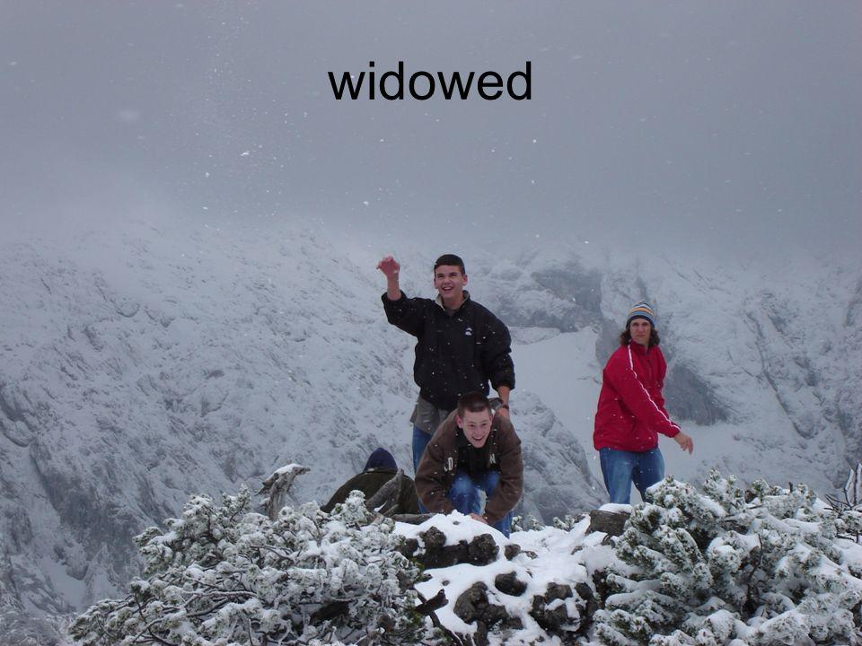 widowed