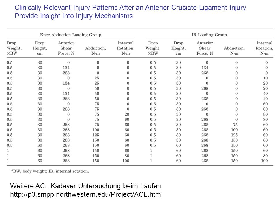 Clinically Relevant Injury Patterns After an Anterior Cruciate Ligament Injury Provide Insight Into Injury Mechanisms Weitere ACL Kadaver Untersuchung