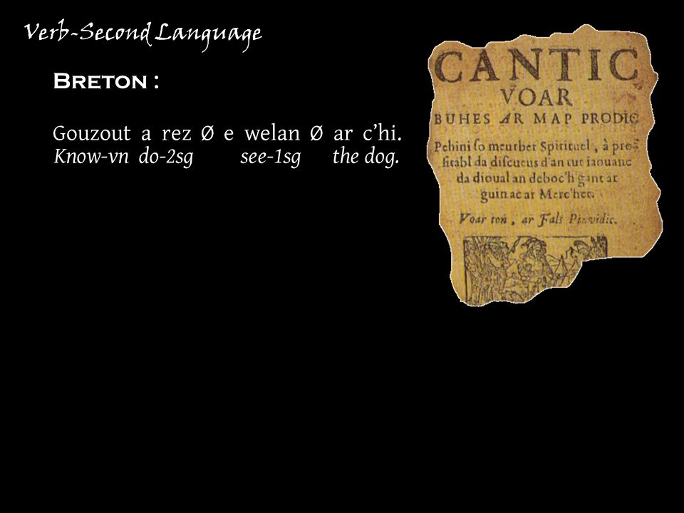 Verb-Second Language Breton : Gouzout a rez Ø e welan Ø ar chi. Know-vn do-2sg see-1sg the dog.