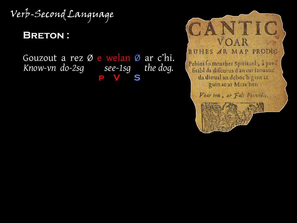 Verb-Second Language Breton : Gouzout a rez Ø e welan Ø ar chi.