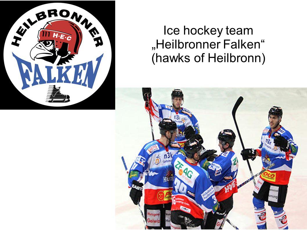 Ice hockey team Heilbronner Falken (hawks of Heilbronn)