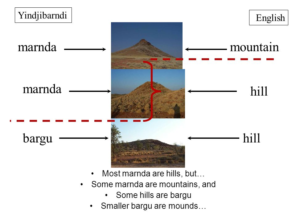 mountain hill marnda bargu Yindjibarndi English marnda hill Most marnda are hills, but… Some marnda are mountains, and Some hills are bargu Smaller bargu are mounds…