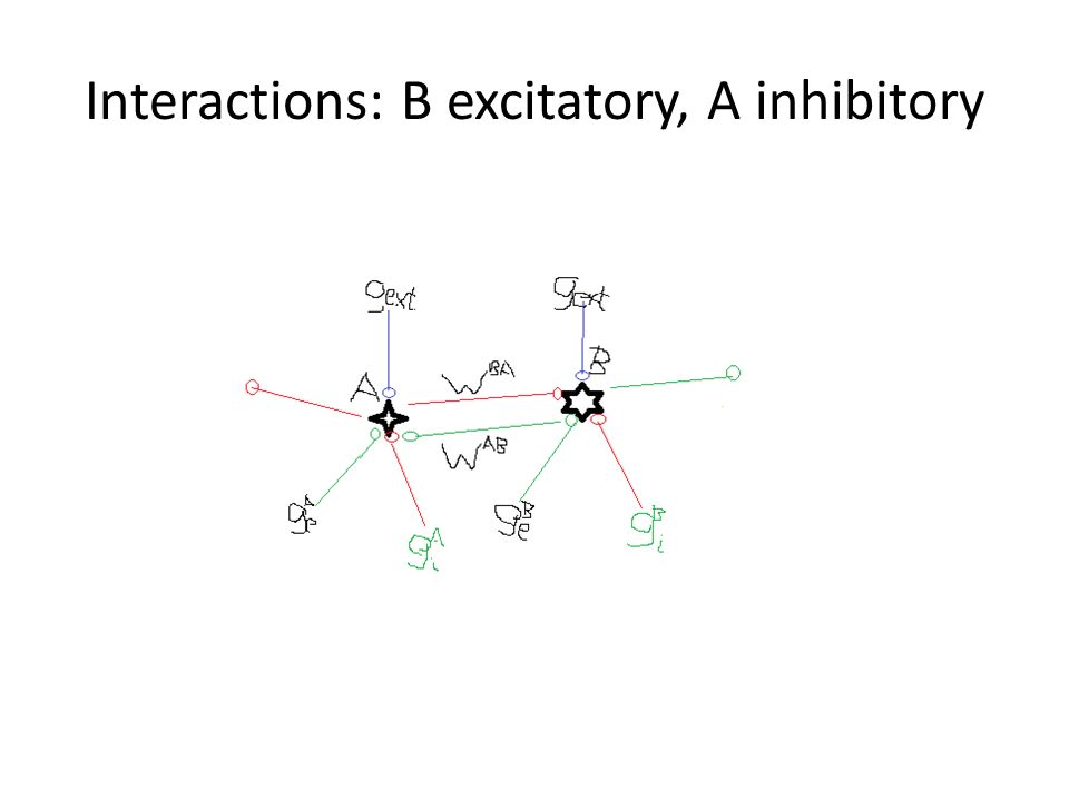 Interactions: B excitatory, A inhibitory
