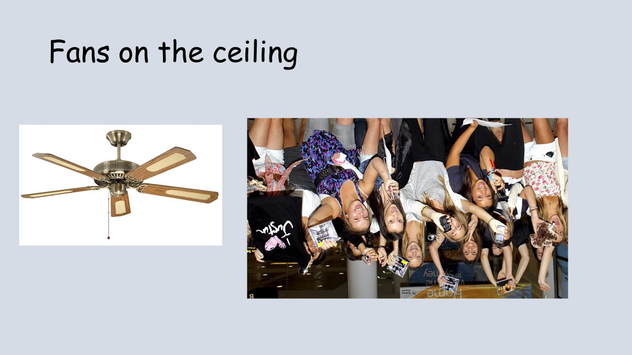 Fans on the ceiling