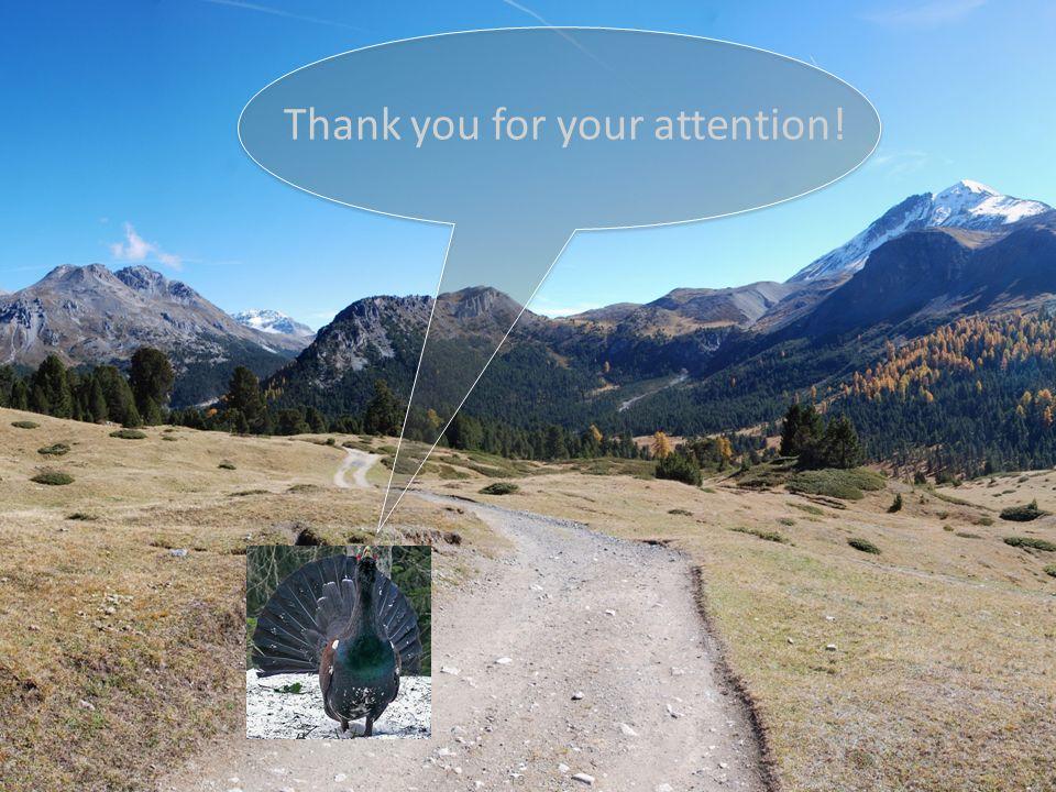 mafreina Management Freizeit Natur Move Workshop Zürich, 27.10. 2011 Thank you for your attention! 13