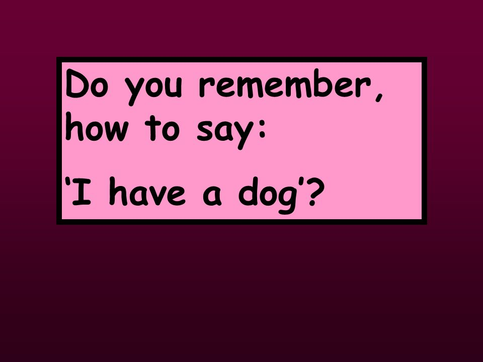 Do you remember, how to say: I have a dog?