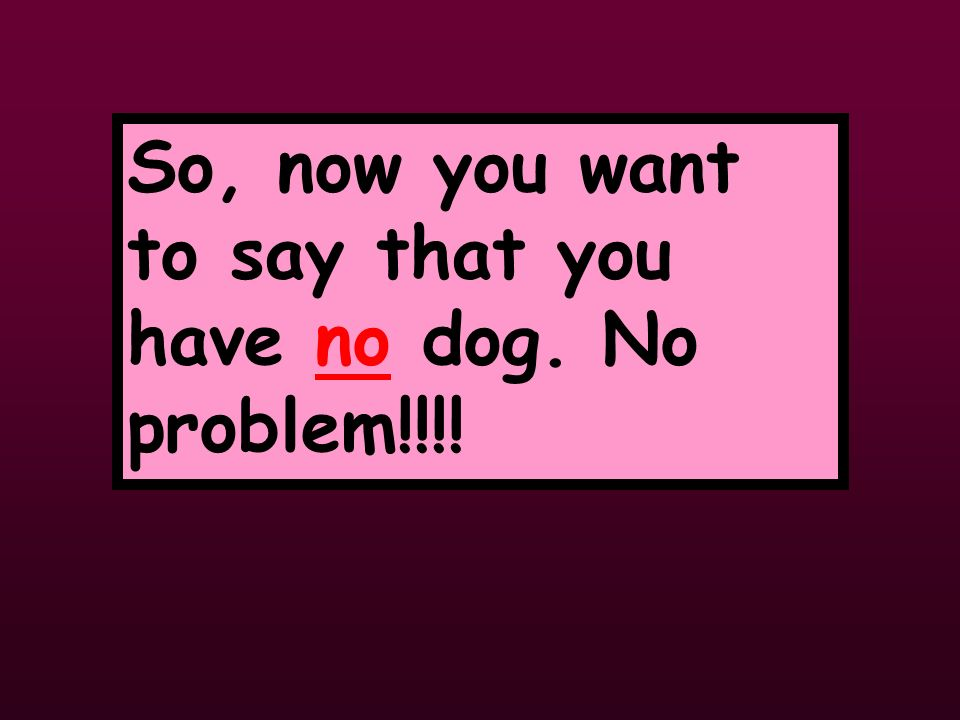 So, now you want to say that you have no dog. No problem!!!!