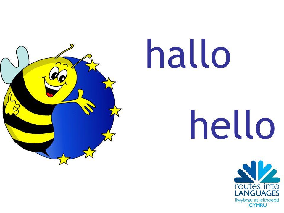hallo hello