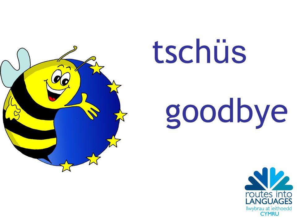tsch üs goodbye