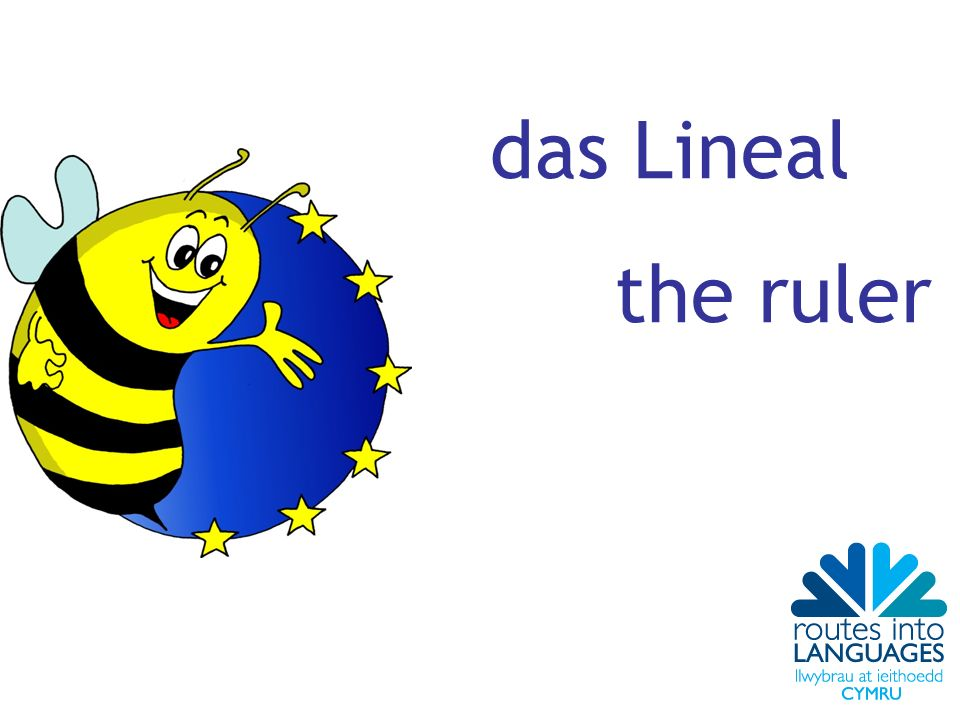 das Lineal the ruler
