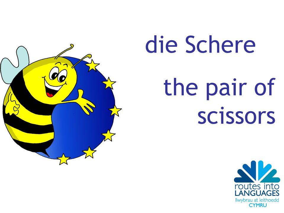 die Schere the pair of scissors