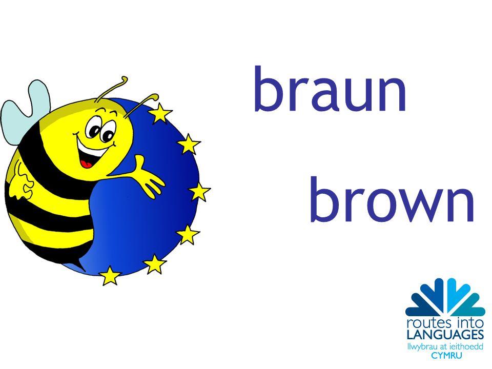 braun brown