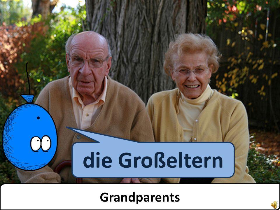 der Großvater Grandfather