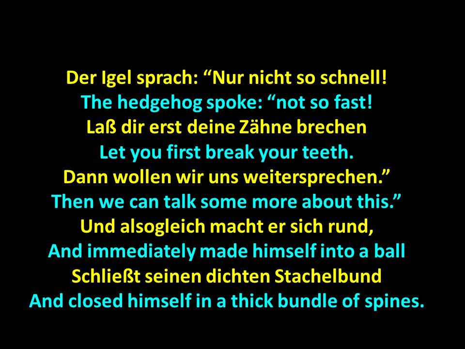 Der Igel sprach: Nur nicht so schnell. The hedgehog spoke: not so fast.