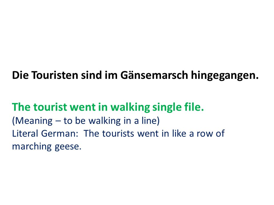 Die Touristen sind im Gänsemarsch hingegangen. The tourist went in walking single file.