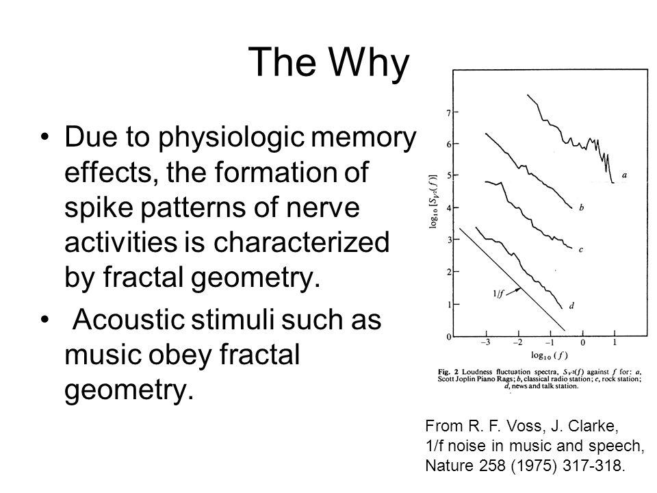 The Why Due to physiologic memory effects, the formation of spike patterns of nerve activities is characterized by fractal geometry. Acoustic stimuli
