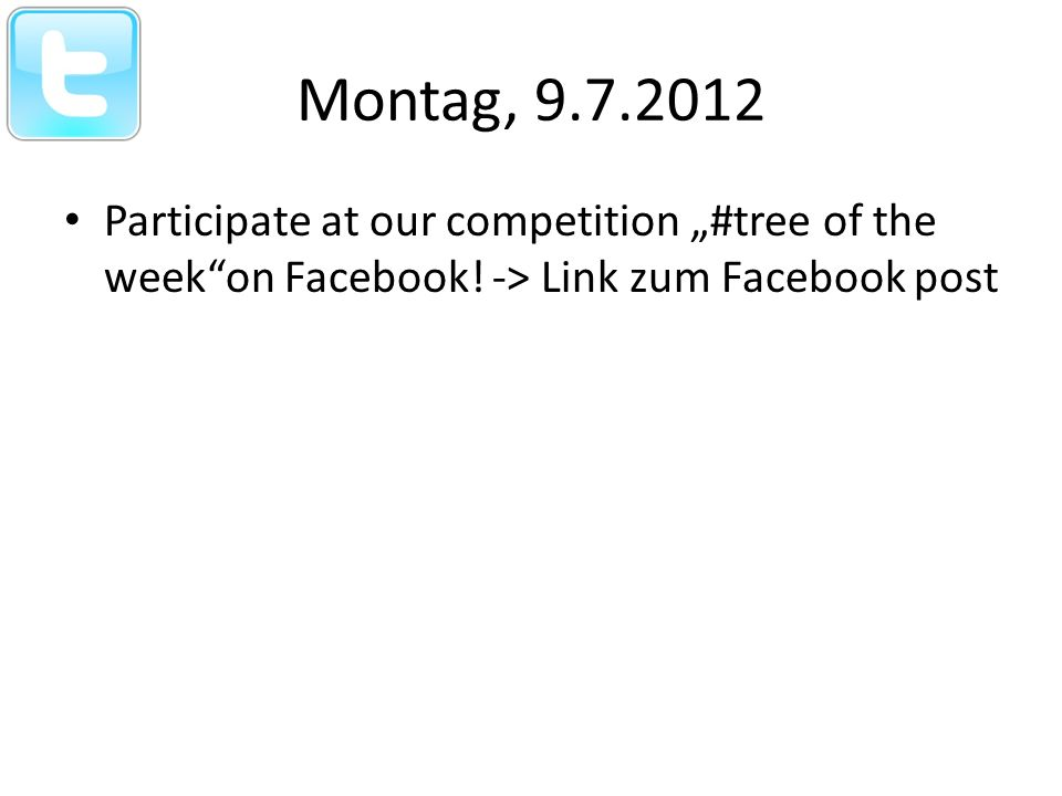 Freitag, 13.07.2012 This is the first Tree of the week.