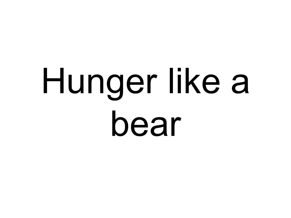 Hunger like a bear
