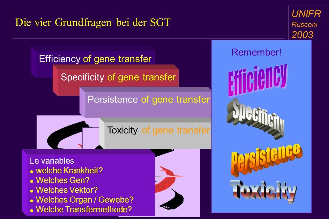 Die vier Grundfragen bei der SGT a aa a aa UNIFR Rusconi 2003 a aa a aa Efficiency of gene transfer Specificity of gene transfer Persistence of gene transfer Toxicity of gene transfer Remember.