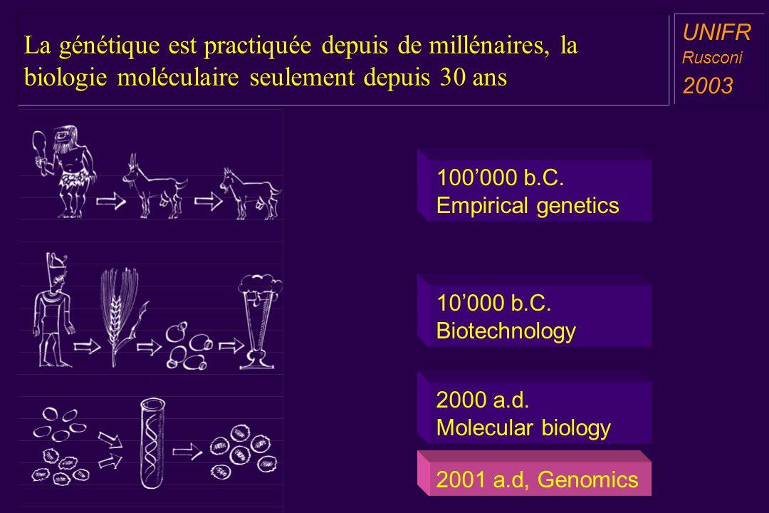 La génétique est practiquée depuis de millénaires, la biologie moléculaire seulement depuis 30 ans a aa a aa UNIFR Rusconi 2003 100000 b.C.