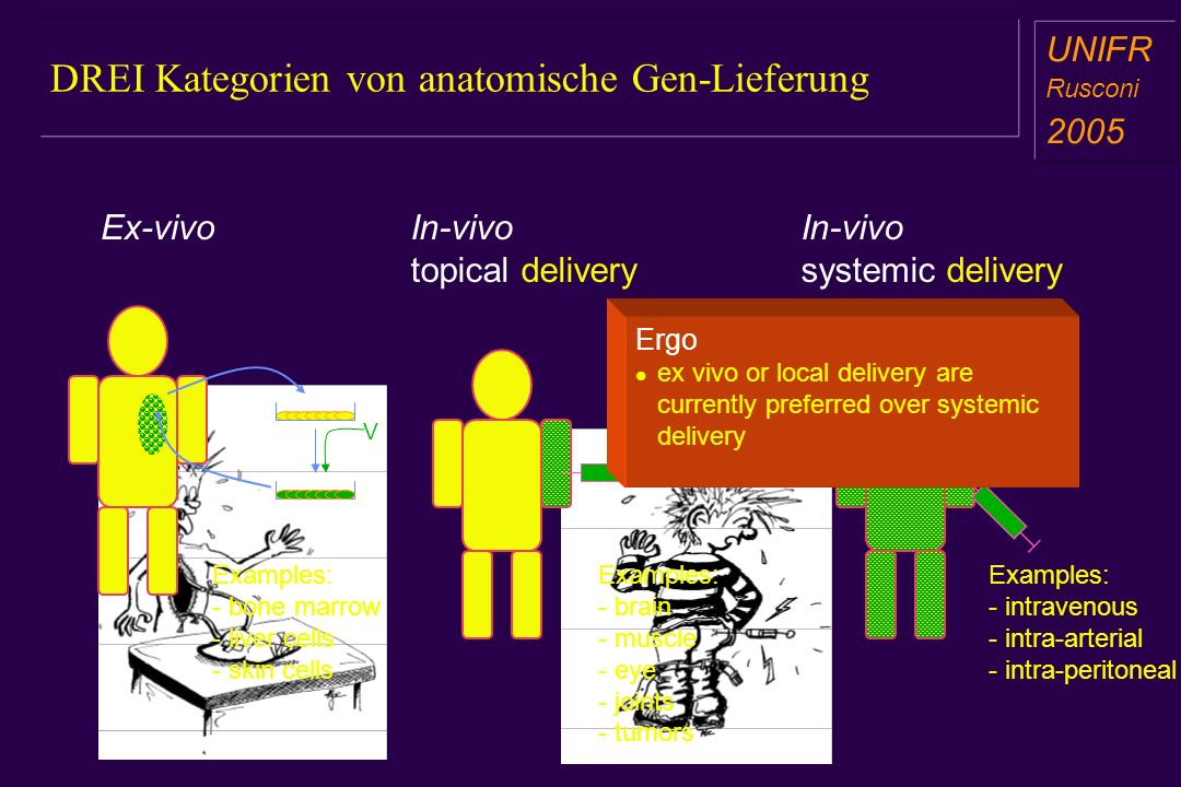DREI Kategorien von anatomische Gen-Lieferung a aa a aa Ex-vivoIn-vivo topical delivery In-vivo systemic delivery V Examples: - bone marrow - liver ce