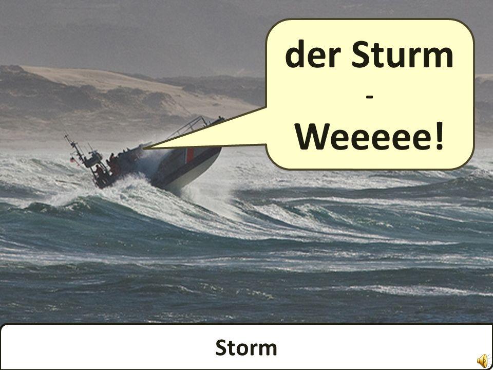 Wind der Wind