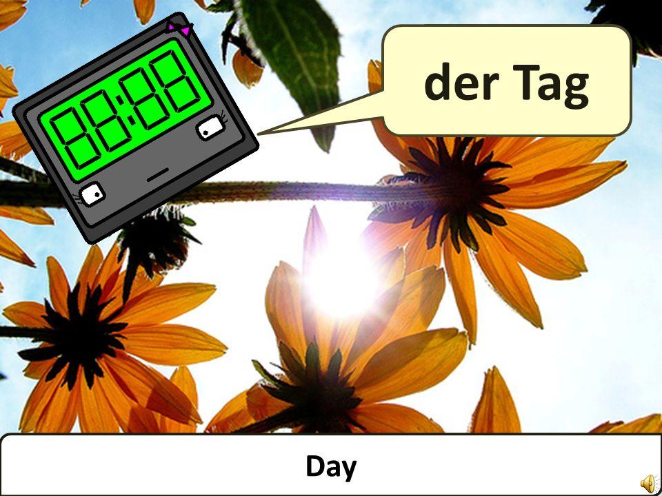 Day der Tag