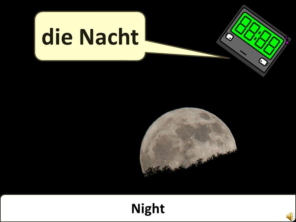 Night die Nacht