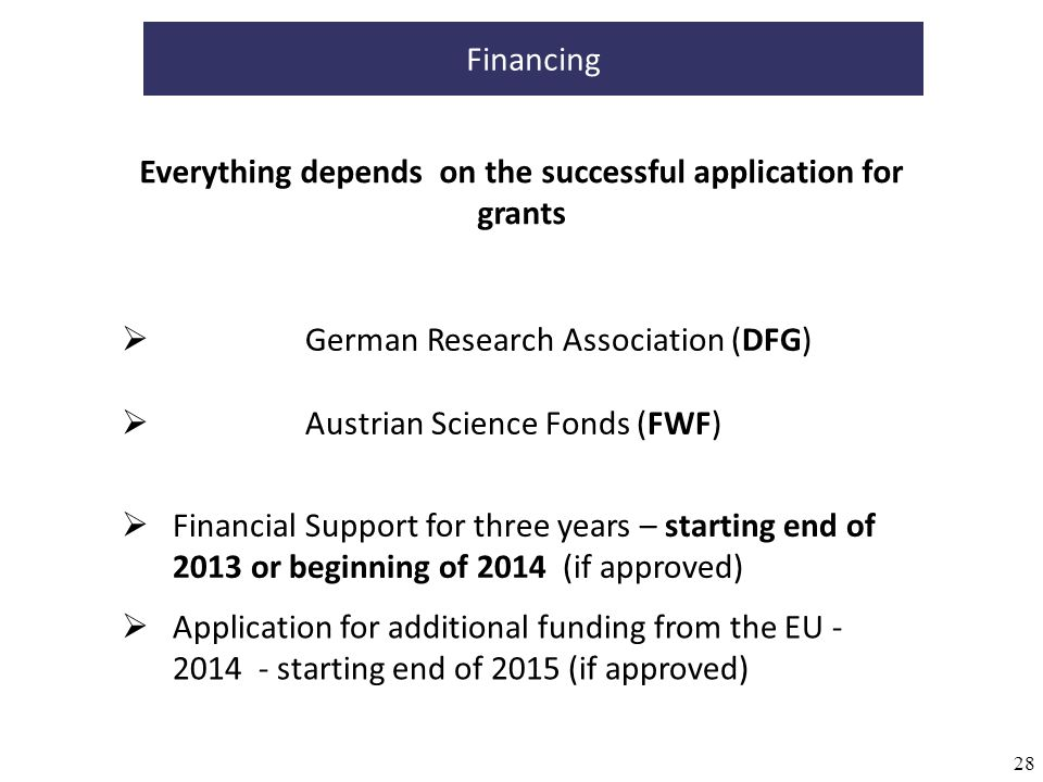 28 Financing German Research Association (DFG) Austrian Science Fonds (FWF) Financial Support for three years – starting end of 2013 or beginning of 2
