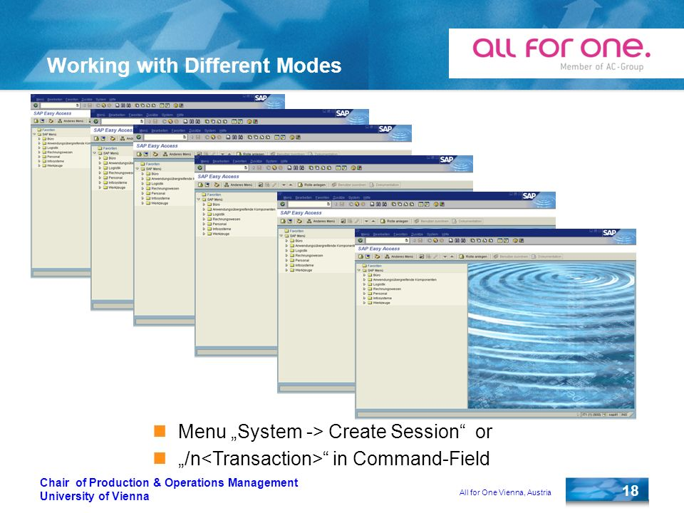 All for One Vienna, Austria 18 Chair of Production & Operations Management University of Vienna Working with Different Modes Menu System -> Create Session or /n in Command-Field
