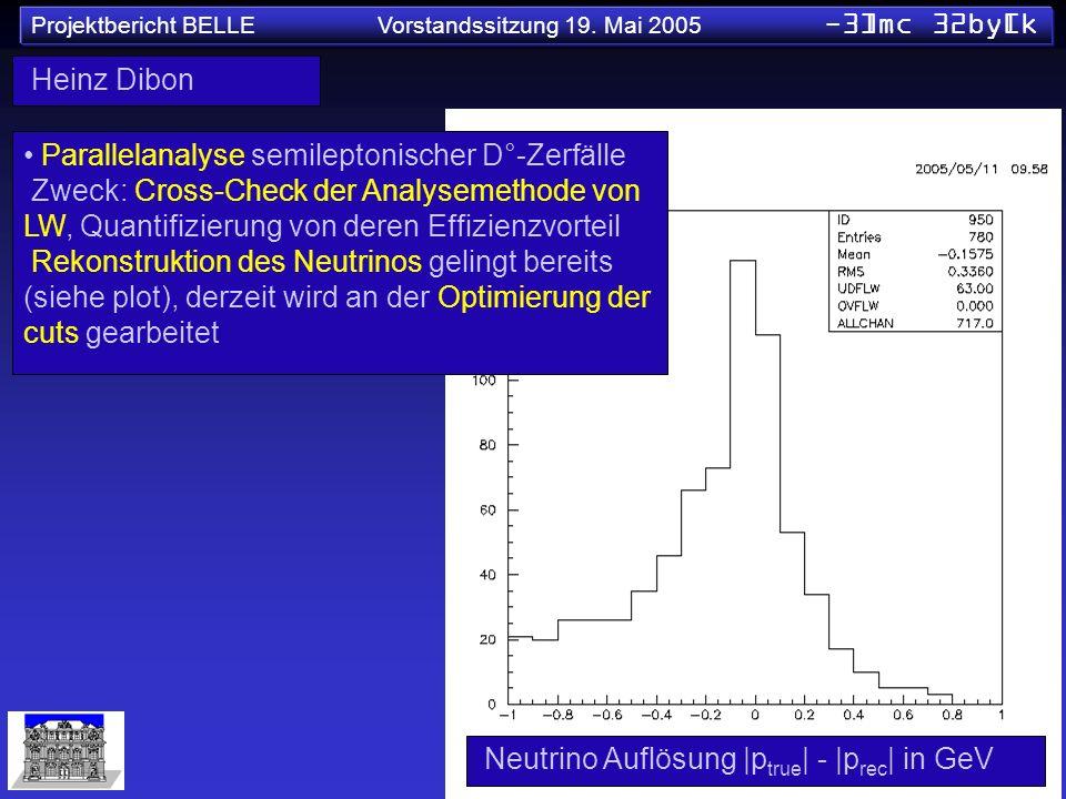 Projektbericht BELLE Vorstandssitzung 19. Mai 2005 -3]mc 32by[k Heinz Dibon Parallelanalyse semileptonischer D°-Zerfälle Zweck: Cross-Check der Analys