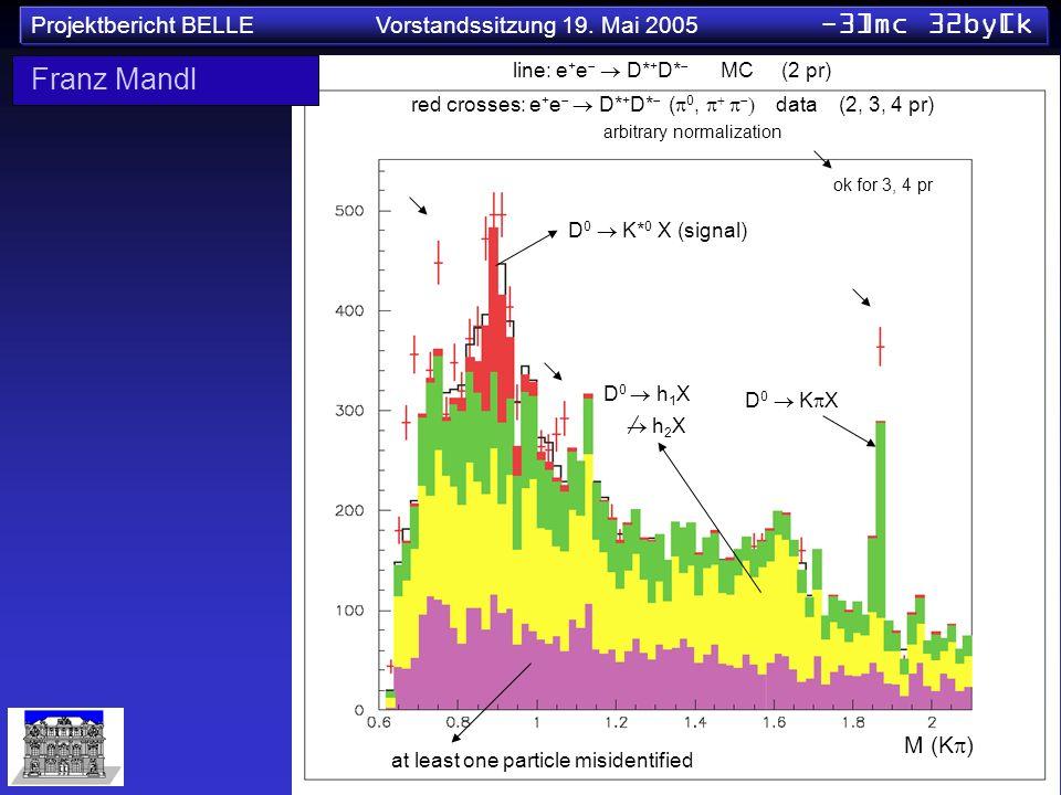 Projektbericht BELLE Vorstandssitzung 19. Mai 2005 -3]mc 32by[k line: e + e D* + D* MC (2 pr) red crosses: e + e D* + D* ( 0, data (2, 3, 4 pr) D 0 K*